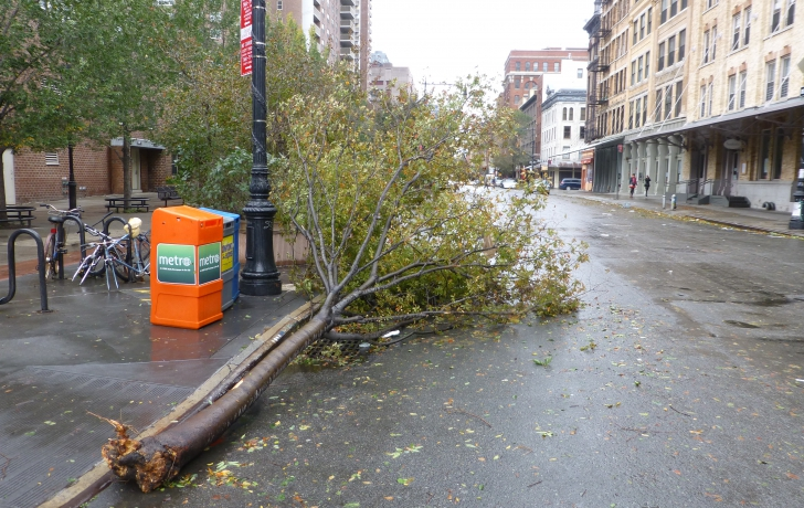 There were some downed trees in Tribeca, but the loss of electricity was many residents' biggest challenge on Tuesday.