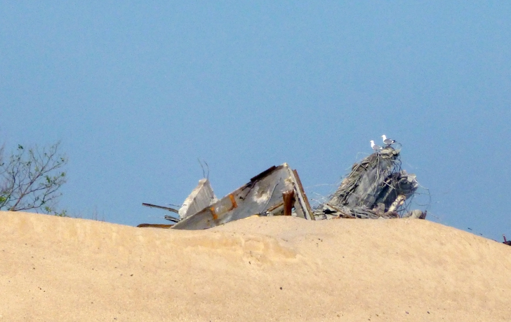 Seagulls quickly found a new roost, atop the mound of rubble. Photo: Carl Glassman/Tribeca Trib